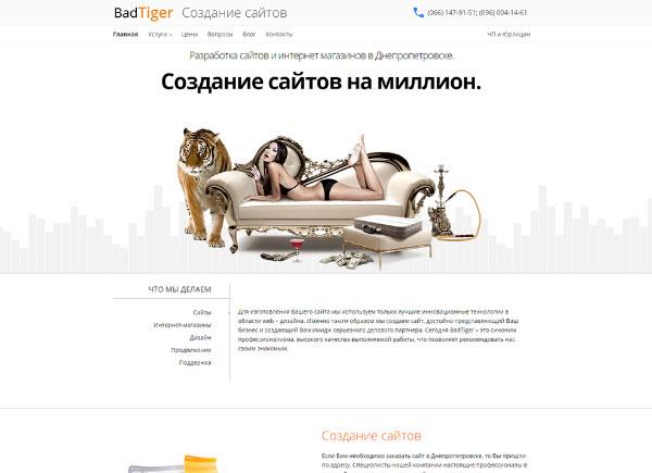 Ре-дизайн-сайта-BadTiger